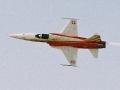 F-5E Tiger Patrouille Suisse