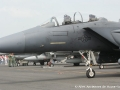 F15Pic138.jpg